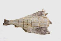 Aprenda a escolher bacalhau quando o vai comprar entre outras dicas