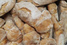 Pão de água caseiro simples e fácil
