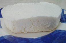 Queijo fresco caseiro (receita rápida e fácil )