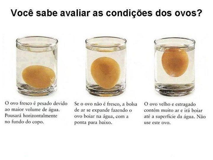 Aprenda a saber a idade dos ovos